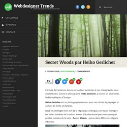 Secret Woods par Heiko Gerlicher