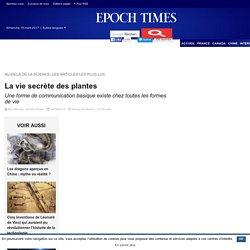 La vie secrète des plantes – Epoch Times