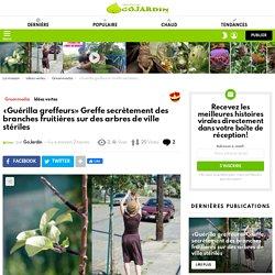«Guérilla greffeurs» Greffe secrètement des branches fruitières sur des arbres de ville stériles - Go Jardin