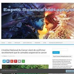 L'Institut National du Cancer vient de confirmer secrètement que le cannabis soignerait le cancer