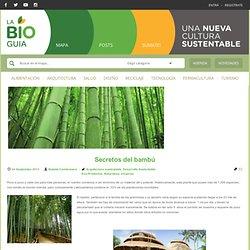 Secretos del bambú