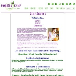 Secrets Chapter 1 - Kombucha Kamp