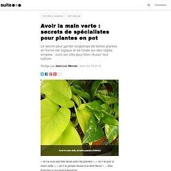 Avoir la main verte : secrets de spécialistes pour plantes en pot