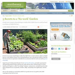 5 Secrets to a 'No-work' Garden | Eartheasy Blog