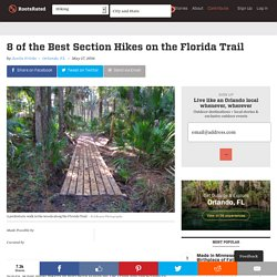 American Hiking Society 8 of the Best Section Hikes on the Florida Trail - American Hiking Society