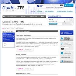 Etudes sectorielles, études économiques sectorielles : vente en ligne d'études sectorielles - Le guide de la TPE