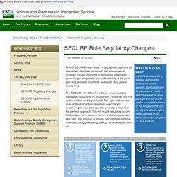 SECURE Rule Regulatory Changes