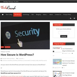 How Secure is WordPress? - Is it safe to use WordPress for your website?