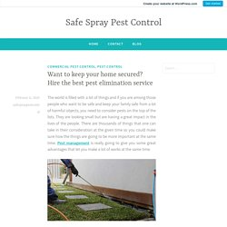 Want to keep your home secured? Hire the best pest elimination service – Safe Spray Pest Control