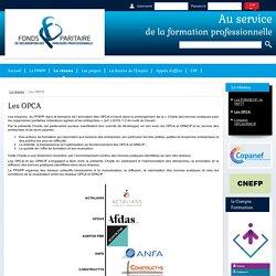 Fonds Paritaire de Sécurisation des Parcours Professionnels - FPSPP - Les OPCA