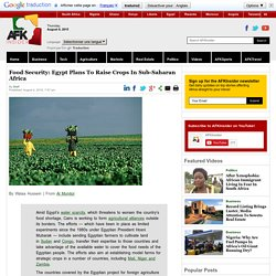 Food Security: Egypt Plans To Raise Crops In Sub-Saharan Africa