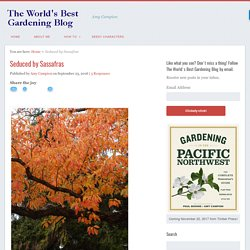 The World's Best Gardening Blog