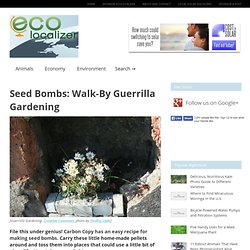 Seed Bombs: Walk-By Guerrilla Gardening : EcoLocalizer - StumbleUpon