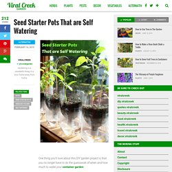 Seed Starter Pots That are Self Watering