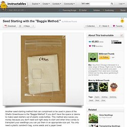 """Seed Starting With The """"Baggie Method."""""""
