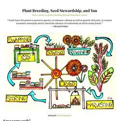 Seed Stewardship
