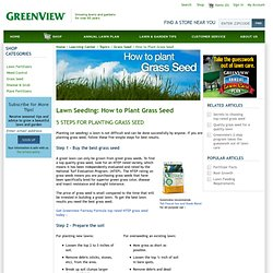 Lawn Seeding: How to Plant Grass Seed - Greenview