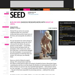 Seeing in the Dark & SEEDMAGAZINE.COM