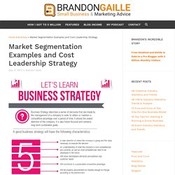 Market Segmentation Examples and Cost Leadership Strategy
