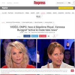 """VIDÉO. ONPC: face à Ségolène Royal, Vanessa Burggraf """"active le mode fake news"""""""