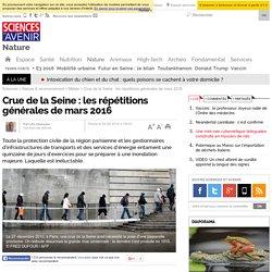 Crue de la Seine : répétitions générales face à une catastrophe annoncée