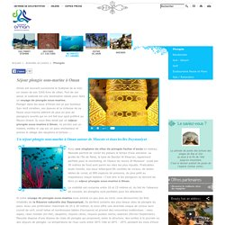 Séjour plongée sous marine, voyage de plongée sous-marine, plongée océan indien : Oman Tourisme