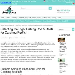 Selecting the Right Fishing Rod & Reels for Catching Redfish – Salty Scales