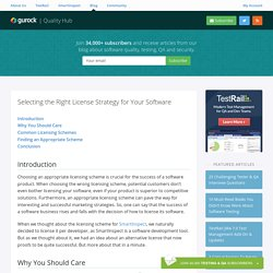 Selecting the Right License Strategy for Your Software – Gurock Quality Hub