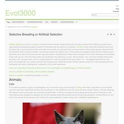 Selective Breeding or Artificial Selection