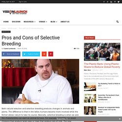 Pros and Cons of Selective Breeding - Vision Launch