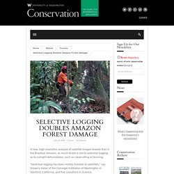 Selective Logging Doubles Amazon Forest Damage