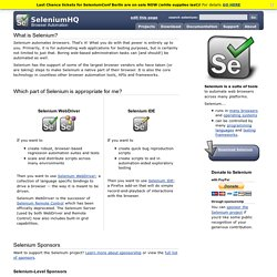 Selenium web application testing system