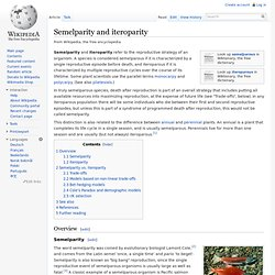 Semelparity and iteroparity