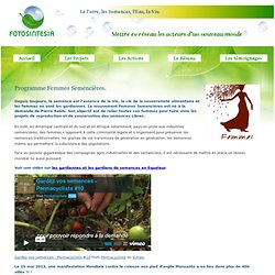 Programme Femmes Semencières. - Fotosintesia