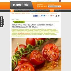 Brevets sur le vivant : les grands semenciers européens privatisent la couleur des tomates