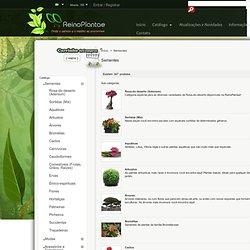 Sementes de Plantas Exóticas e Plantas Raras - Loja ReinoPlantae
