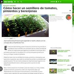 Cómo hacer un semillero de tomates, pimientos y berenjenas