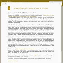 Crieurs Publics: Séminaire #BiblioCovid19 : synthèse de l'atelier sur les espaces