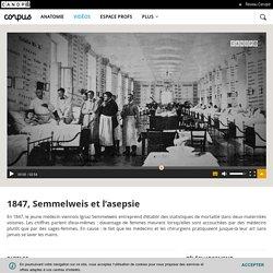 1847, Semmelweis et l'asepsie - Corpus - réseau Canopé