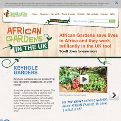 African Gardens in the UK