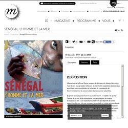 Sénégal. L'homme et la mer