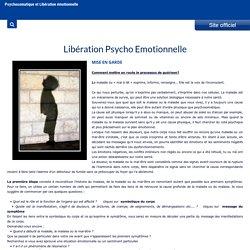 Libération Emotionnelle - LPE - Libération émotionnelle - métamédecine