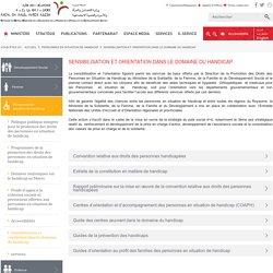 Ministère de la solidarité de la femme de la famille et du développement social