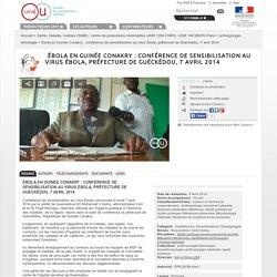 Ébola en Guinée Conakry : conférence de sensibilisation au virus Ébola, préfecture de Guéckédou, 7 avril 2014 - Santé, maladie, malheur (SMM) : centre de productions multimédias UMR 7206 CNRS, USM 104 MNHN Paris