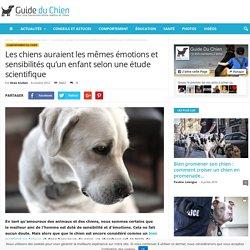 Les chiens auraient les mêmes émotions et sensibilités qu'un enfant selon une étude scientifique