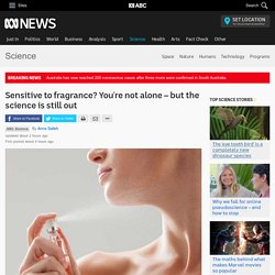 Sensitive to fragrance? You're not alone – but the science is still out - Science - ABC News