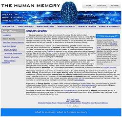 Sensory Memory - Types of Memory