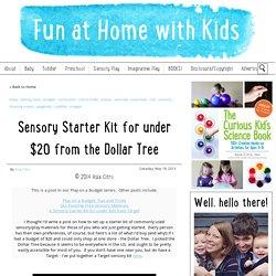 Sensory Starter Kit for under $20 from the Dollar Tree