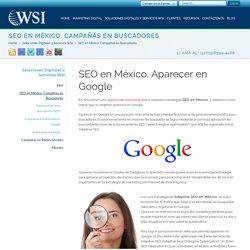 WSI México Digital Marketing