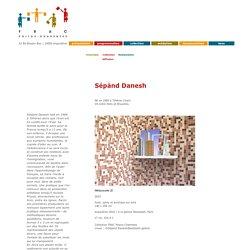 Sépànd Danesh, collection FRAC Poitou-Charentes